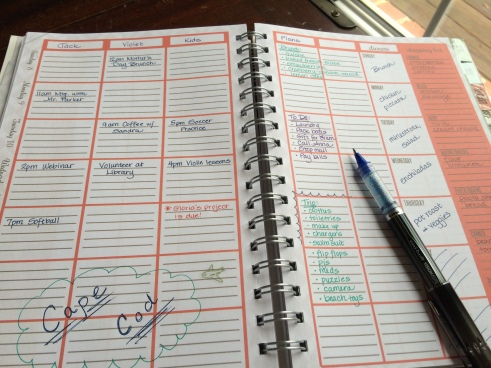 The Home Executive Day Planner 2015 weekly layout 1