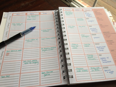 The Home Executive Day Planner 2015 weekly layout 3