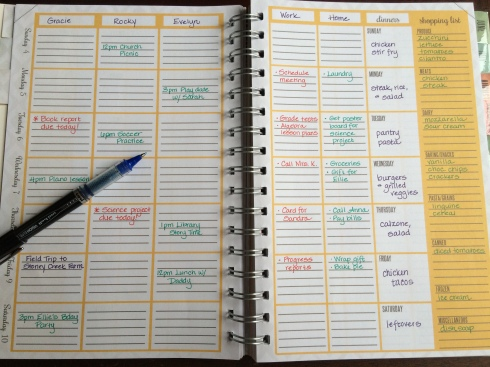 The Home Executive Day Planner 2015 weekly layout